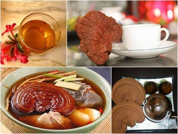 Share The Top Mistakes Using Ganoderma