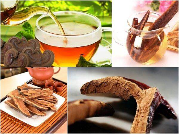 Ganoderma juice is used for how long
