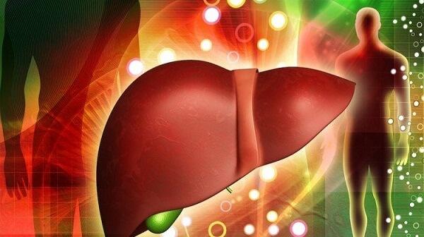 Có nhiều nguyên nhân khiến gan bị nhiễm độc và gây ra các căn bệnh nguy hiểm
