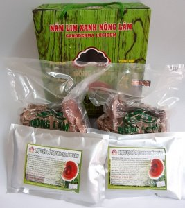 Nấm lim xanh Nông Lâm có giá thành phải chăng