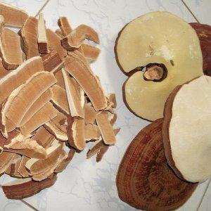 Linh Chi Nông lâm cung cấp nấm linh chi đỏ chất lượng