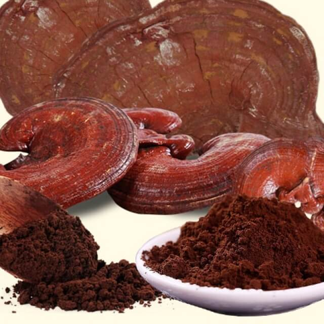 It should be noted some cases before using Ganoderma