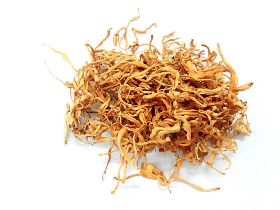 Bên cạnh đó các nhà khoa học còn tiếp tục nghiên cứu và ngày càng ... Loại Đông trùng hạ thảo đang được nuôi trồng phổ biến ở nước ta?