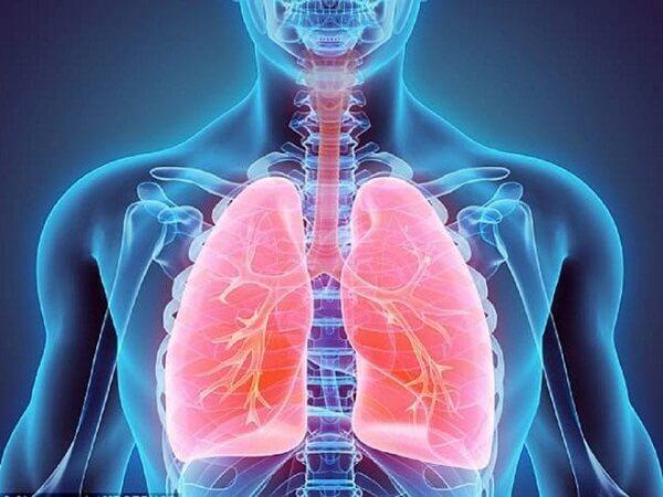 Có nhiều căn bệnh nguy hiểm liên quan đến phổi