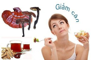 Ganoderma weight loss needs to be persistent