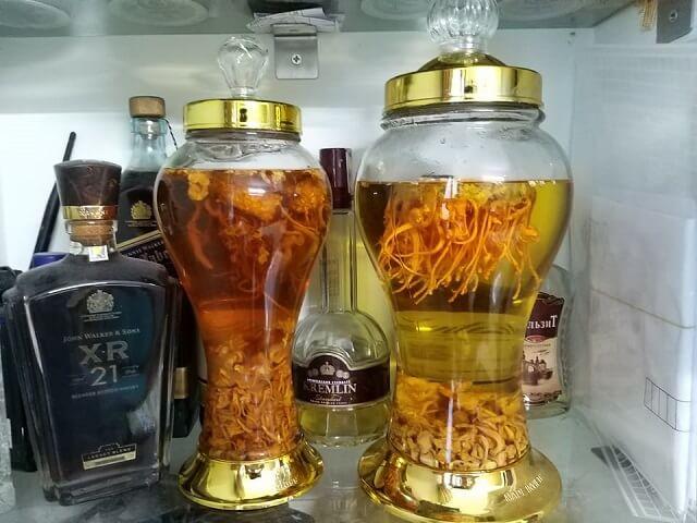 Bạn cũng có thể sử dụng đông trùng hạ thảo dạng sợi để ngâm rượu