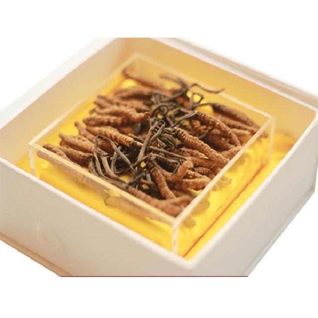 Trùng thảo nguyên con trong hộp gỗ