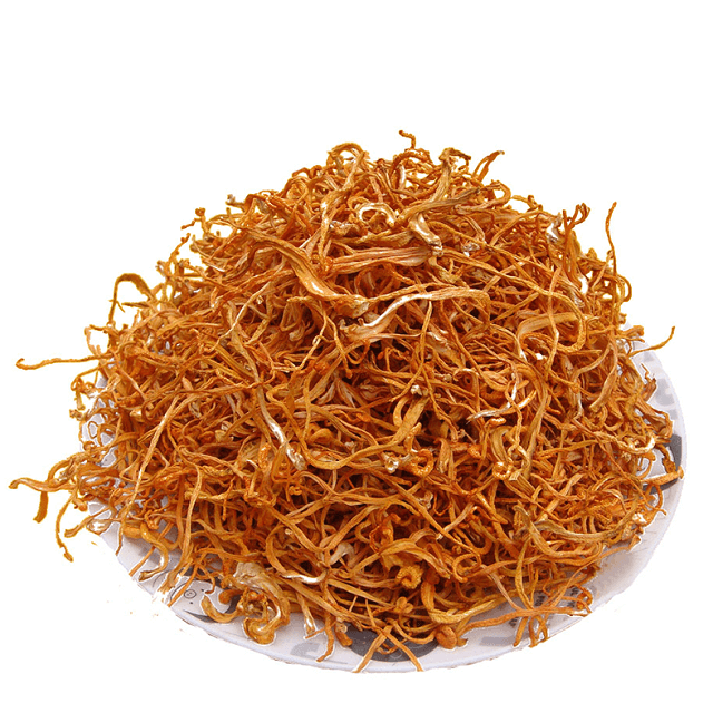 Refrigerated Cordyceps can be used longer