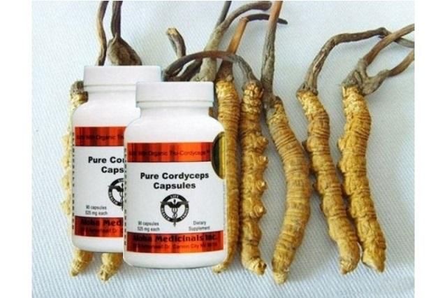 Đông trùng hạ thảo của Úc là loại dược liệu đem đến nhiều lợi ích cho người dùng