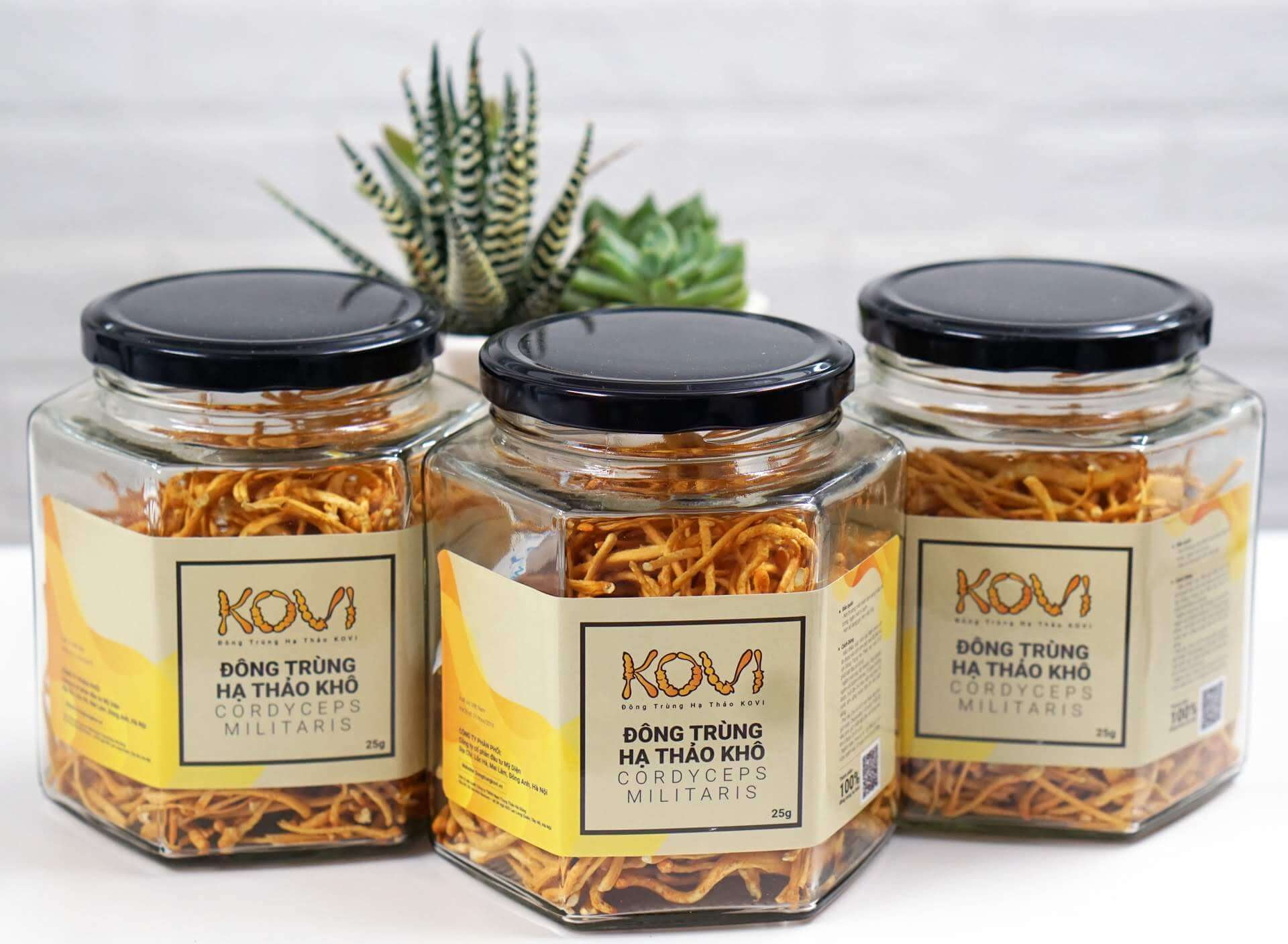Dried cordyceps are produced by sublimation drying method