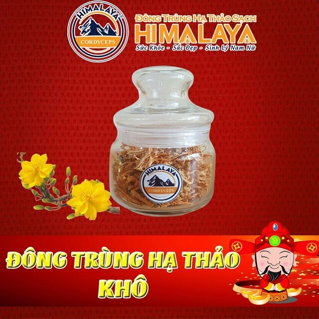 Fresh Himalayan cordyceps has a high nutrient content