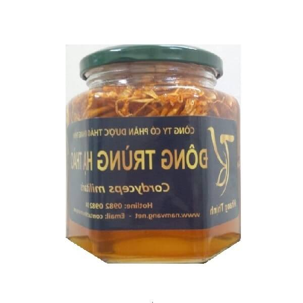 Cordyceps soaked in pure forest honey