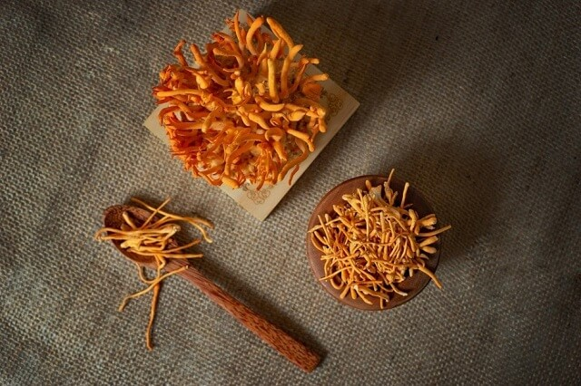 Dried cordyceps for superior quality