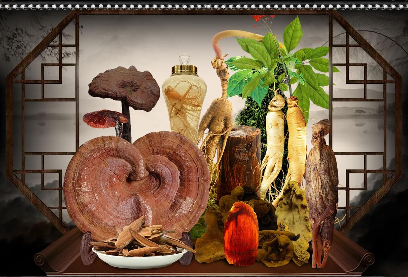 Cải thiện sức đề kháng bằng những loại thảo dược tự nhiên