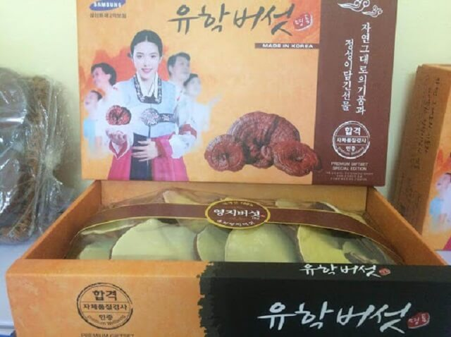 Ganoderma Korean Girl is used to improve health