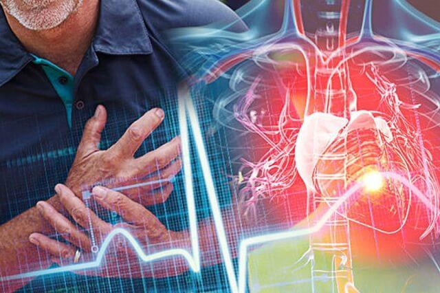 Nấm linh chi Gold mang đến nhiều lợi ích cho sức khỏe tim mạch