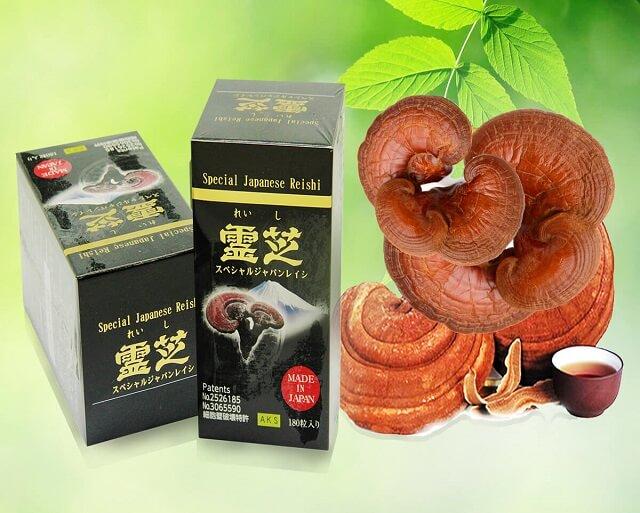 Nấm linh chi Nhật Bản được đánh giá cao về chất lượng