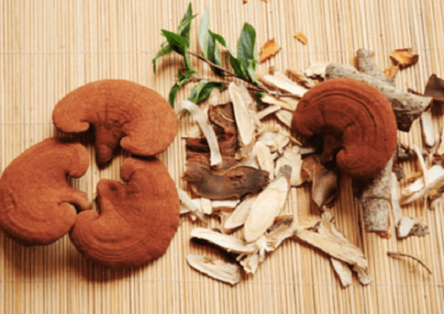Nissan Ganoderma is trusted by customers nationwide