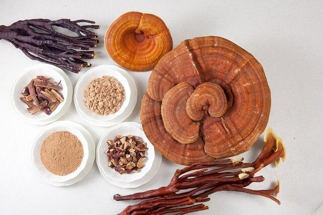 Ganoderma is a rare herb