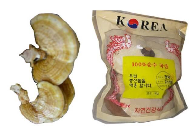 Ganoderma gold has special uses in the treatment of cancer