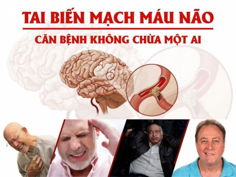 Can benh tai bien mach mau nao 2 - Tác dụng đông trùng hạ thảo với tai biến mạch máu não %year