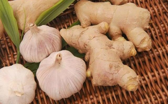 Ginger, garlic has the effect of increasing resistance as not yet the best