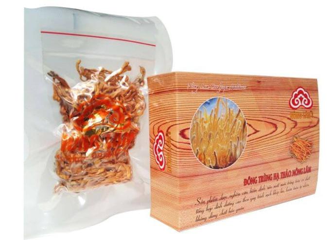 Mua đông trùng hạ thảo ở Bà Rịa - Vũng Tàu thương hiệu Nông Lâm