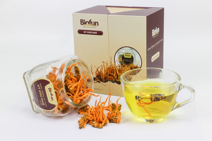 Sản phẩm đông trùng hạ thảo Biofun chất lượng
