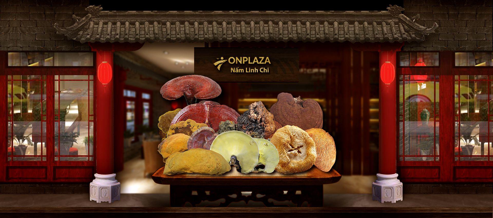 Các sản phẩm về nấm linh chi chính hãng được công ty nhập khẩu trực tiếp từ Hàn Quốc.